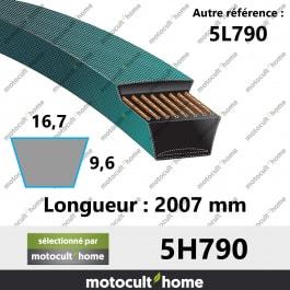 Courroie 5L790