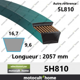 Courroie 5L810