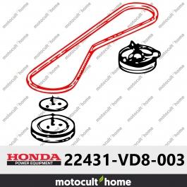Courroie en V Honda 22431VD8003 ( 22431-VD8-003 )