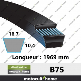 Courroie B75