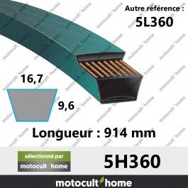 Courroie 5L360