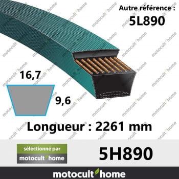 Courroie 5L890-30