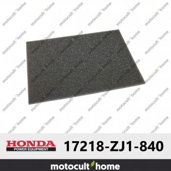 Filtre à air Honda 17218ZJ1840 ( 17218-ZJ1-840 )-30