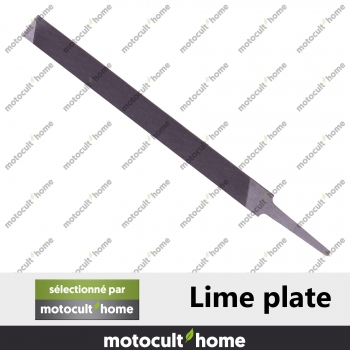 Lime plate-30