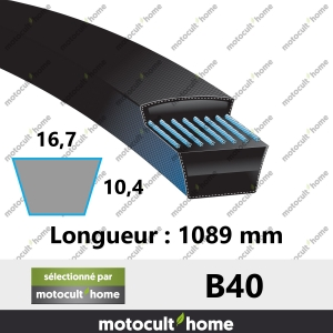 Courroie B40-20