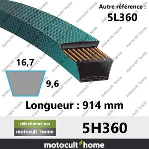 Courroie 5L360-20