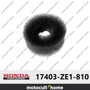 Filtre à air Honda 17403ZE1810 ( 17403-ZE1-810 )-20