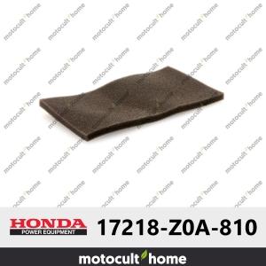 Préfiltre à air Honda 17218Z0A810 ( 17218-Z0A-810 )-20