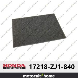 Filtre à air Honda 17218ZJ1840 ( 17218-ZJ1-840 )-20