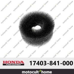 Filtre à air Honda 17403841000 ( 17403-841-000 )-20