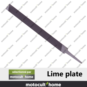 Lime plate-20