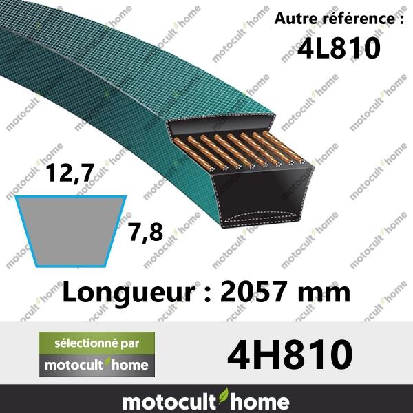 Courroie 4L810-20