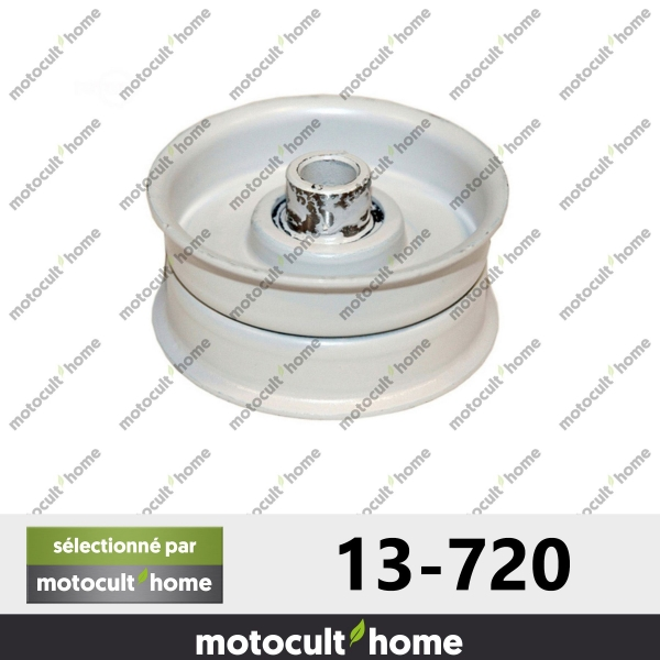 Poulie Galet tendeur Mtd 7560117 hauteur 25mm-20